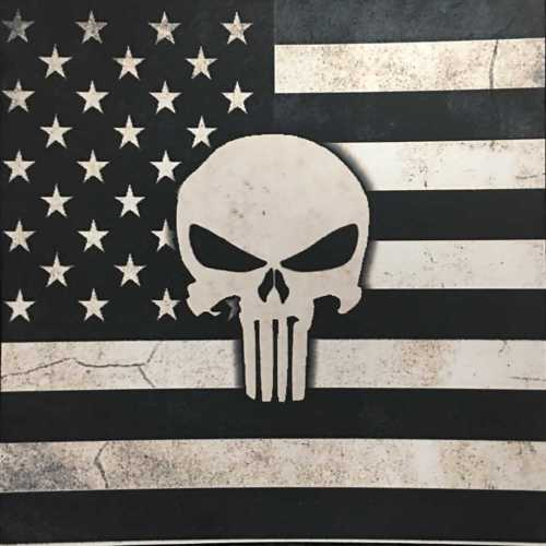 Subdued Punisher on American Flag Kydex